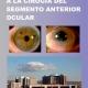 Manual de iniciación a la cirugía del segmento anterior ocular