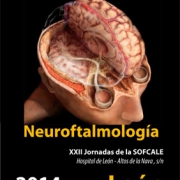 Neuroftalmología – León, sábado 8 de noviembre de 2014